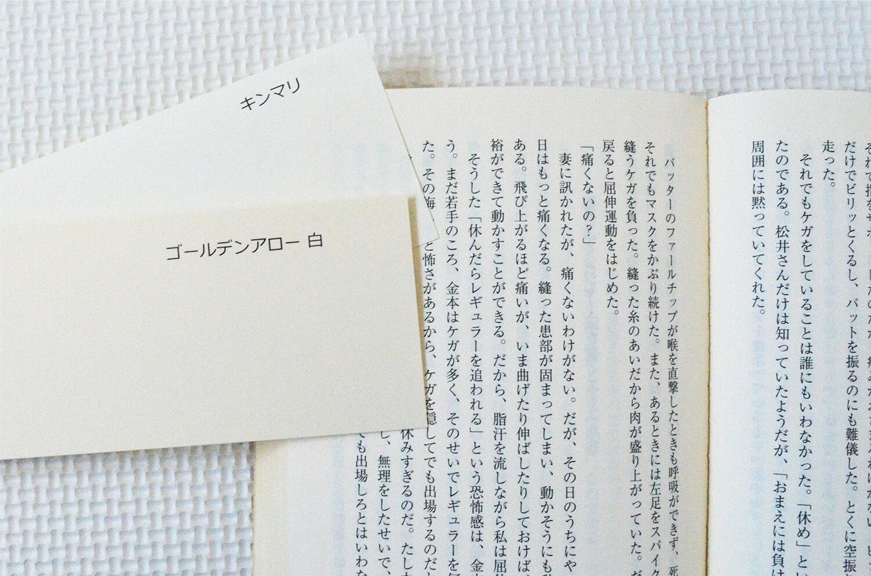 くるみ製本_文庫本イメージ写真